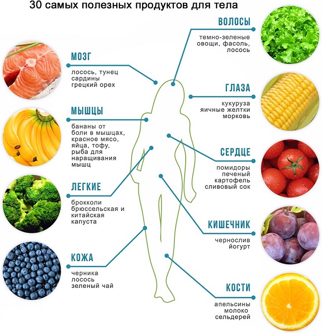Влияние вегетарианства на организм